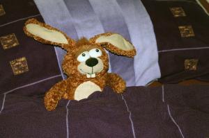 stuffed-animal-240695_640.jpg