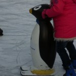 Pinguin in Lübeck